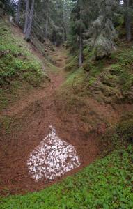 11. Prospettiva di inghiottitoi nel bosco accanto alla caserma.