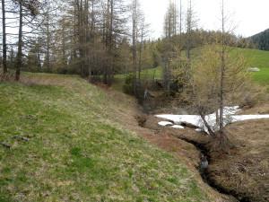 3. L'acqua dello scarico scompare nel terreno: un inghiottitoio attivo.