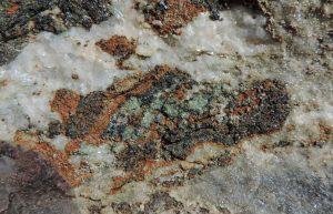 10. Minerali del vecchio fondo oceanico ricristallizzati a grande profondità: pirosseno sodico (verde), rutilo (nero), carbonato di ferro (arancio), mica (argentea) e quarzo (bianco).