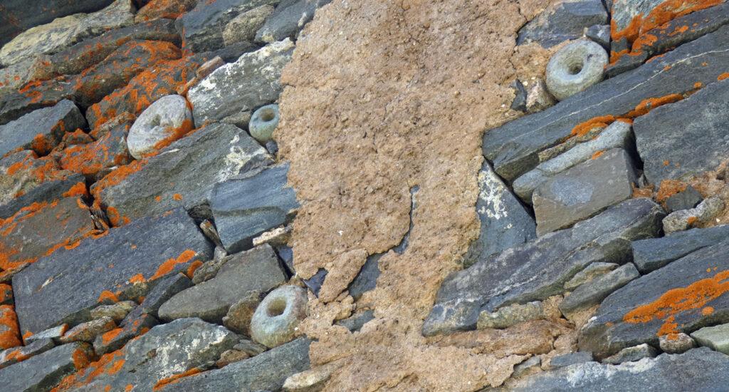 """11. Cinque """"tenoni"""" di pietra ollare, scarti della lavorazione al tornio idraulico, sono inseriti nella parete nord dell'Alpe Mase."""