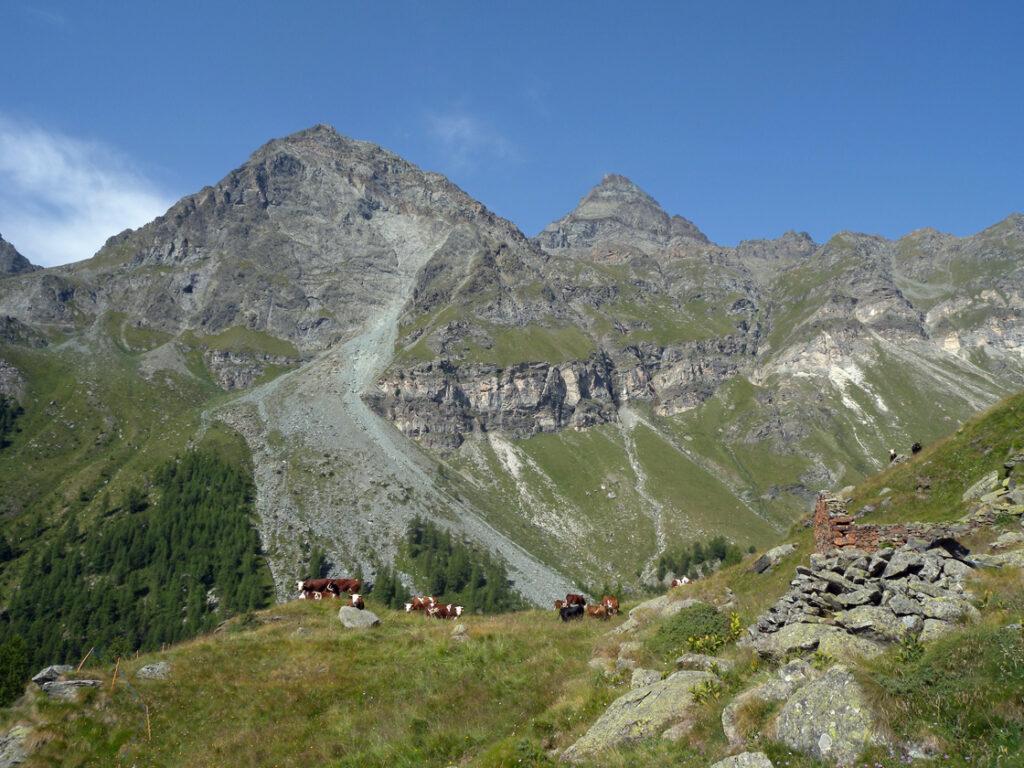 13. Le prime testimonianze storiche dell'utilizzo dell'Alpe Ventina portano alla comunità walser, e in particolare a famiglie risiedenti a Mandriou.