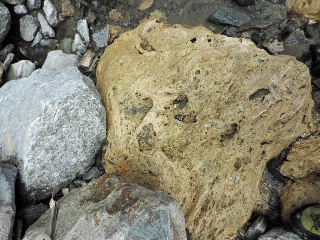 05. Una delle rocce che compongono il livello di scorrimento: la carniola, roccia calcarea vacuolare dall'origine complessa.