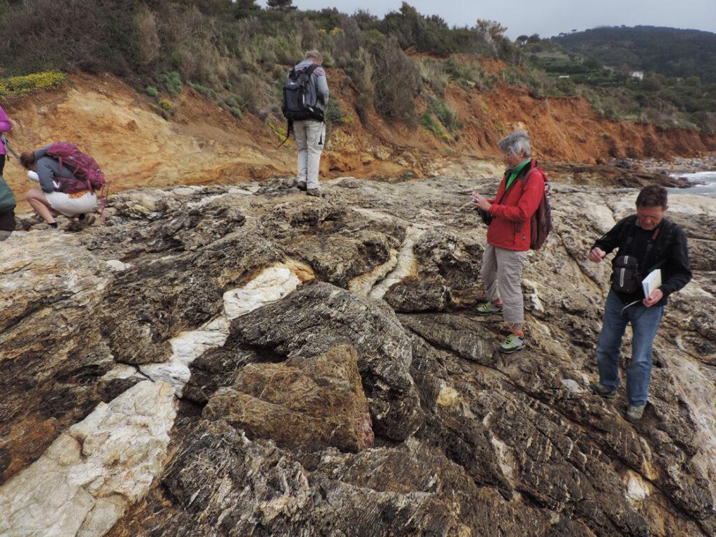 """01b. Antiche rocce silicee della placca continentale Adriatica (""""africana"""") intruse appena 4,5 milioni di anni fa dal bianco filone granitico."""