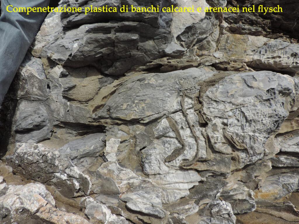 05b. Marina di Campo. Movimenti franosi sui fianchi dell'oceano hanno coinvolto e compenetrato sedimenti calcarei (calcari a calpionelle) e argillosi o arenacei (argille a palombini).