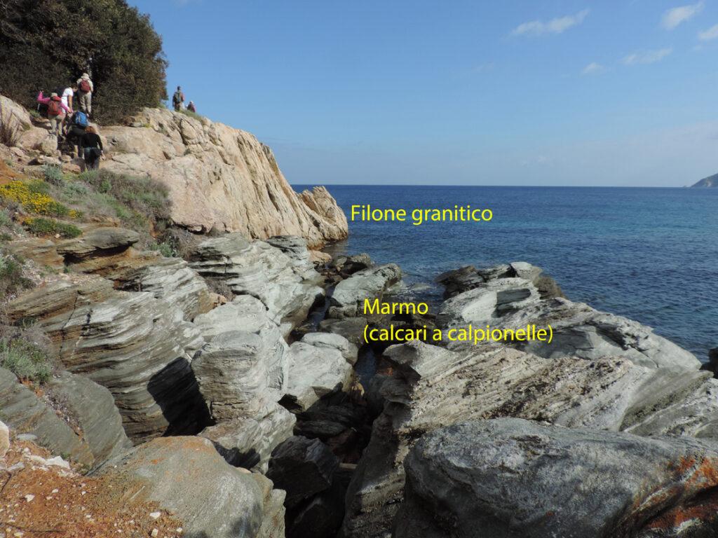 08a. Spartaia. Un filone granitico circa 7 milioni di anni fa si è venuto a sistemare sui sedimenti oceanici (calcari a calpionelle) che erano lì da un centinaio di milioni di anni.