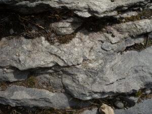 07 - La roccia dell'alpe Aran va da uno gneiss chiaro ad un micascisto ricco di quarzo.