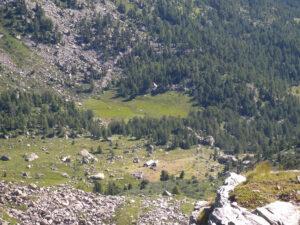 8. Ai piedi del colle, un concentrato di ambienti d'alta quota: pietraie, pascoli, boschi e torbiere.