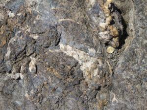 12 - Mica blanc, calcite, quartz, minéraux opaques sont visibles à l'oeil nu dans les schistes lustrés de la Zone Combin.