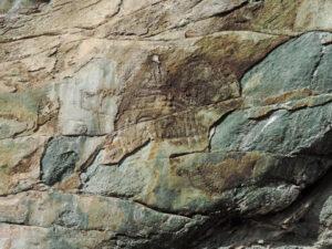 11. La superficie manomessa della Barma di Valtournenche mostra ancora qualche incisione su anfibolite alterata.