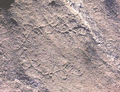 Il delicato disegno dell'incisione rupestre fra Bondon e la Croix de Piole