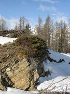 Una vecchia cava di microbreccia quarzo-micacea in cima alla Tête d'Arpy, fra Morgex e La Thuile