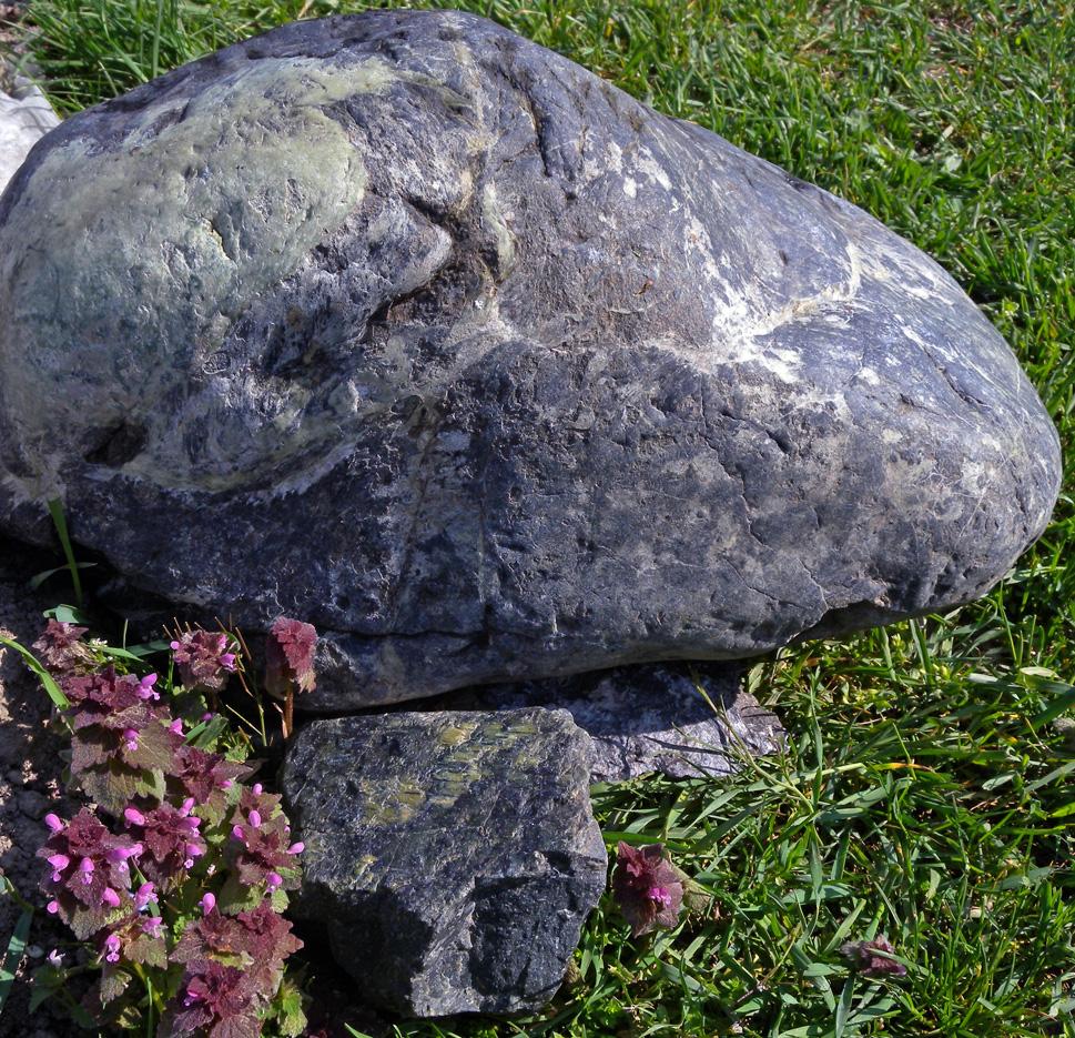 La serpentinite è una roccia che sovente appare liscia, bluastra, screziata di bianco, untuosa al tatto come il talco.