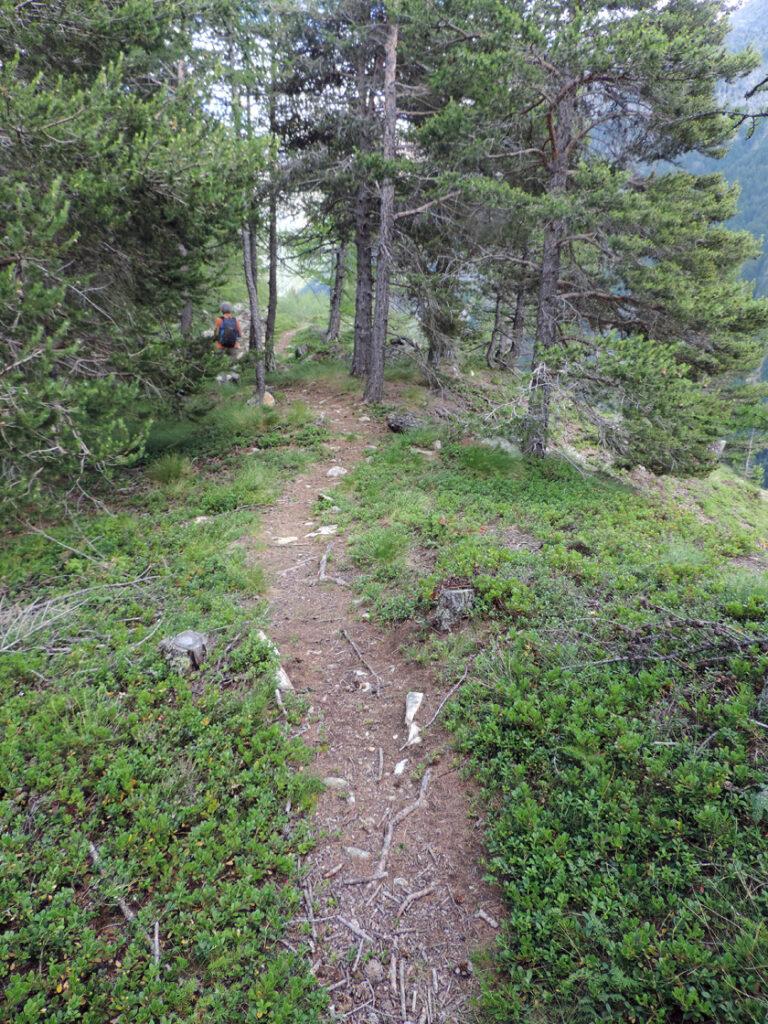 Tutto il rilievo della zona è formato da solchi e creste anche di pochi metri impostati sulla giacitura verticale del corpo roccioso e sulla geometria dei piani su cui si orientano i minerali con direzione NE-SW. Qui il sentiero percorre una di queste creste panoramiche.