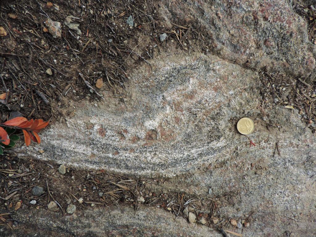Collane di granati e svirgolature di anfiboliti hanno forse ispirato gli arazzi rinascimentali...