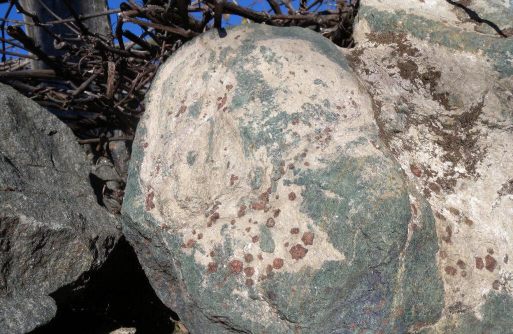 Spiccano i cristalli rossi di granato sui ciottoloni che ingombrano le vigne di Rovarey.
