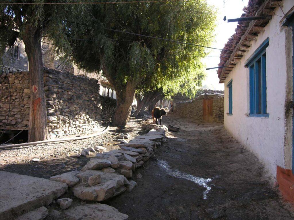 16. Ed eccoci in un tipico villaggio del Mustang, grande ed accogliente.