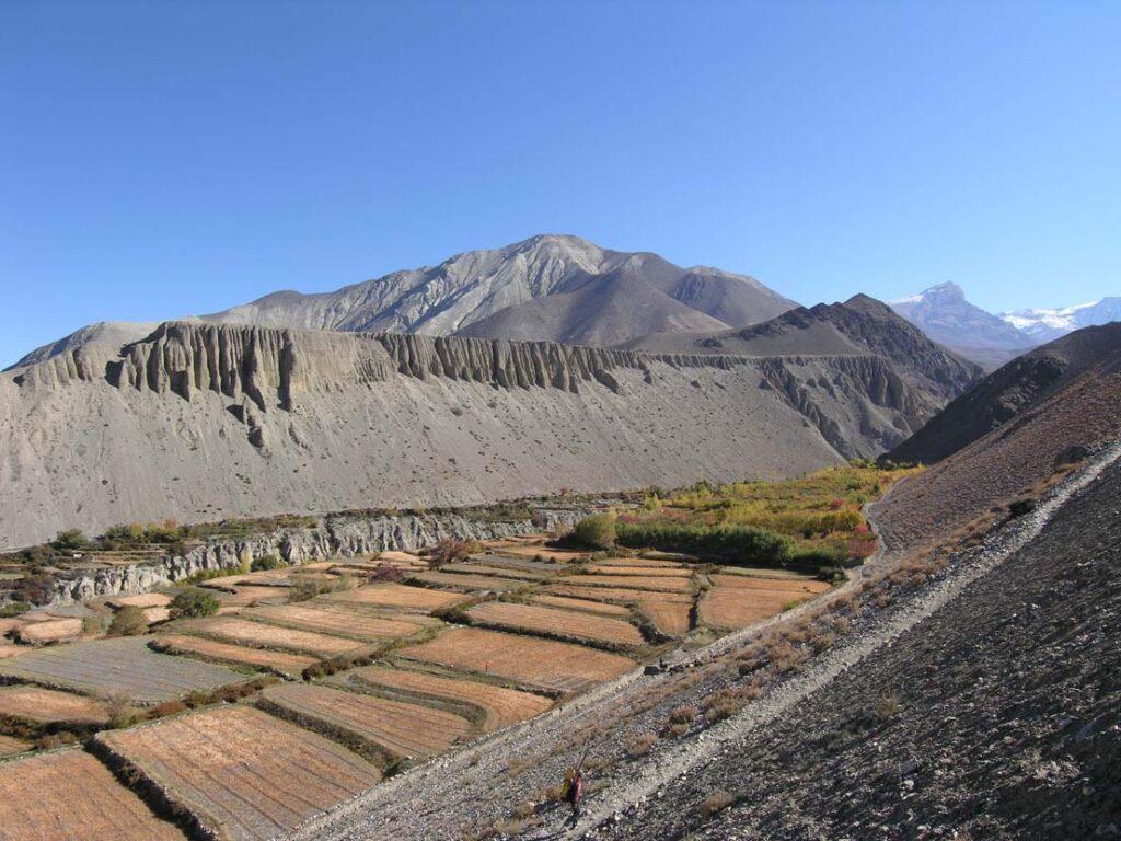 18. Campi ed orti sono strappati ai valloni detritici incisi nella Successione Sedimentaria Tibetana, enorme spessore di sedimenti marini provenienti dal mare che stava fra India e Tibet prima della collisione.
