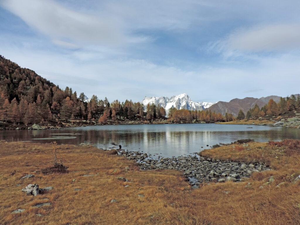 Lac d'Arpy, versione autunnale con sfondo Grandes Jorasses.