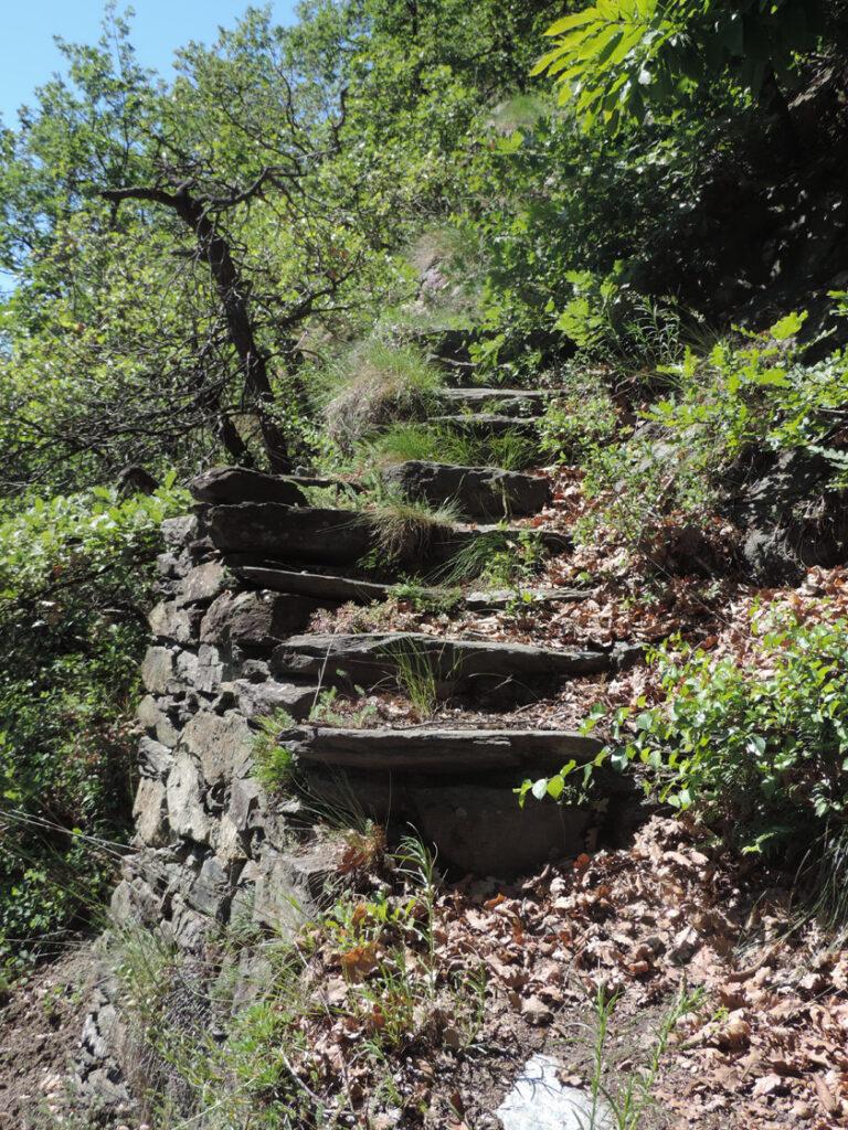 L'ultima rampa del sentiero inizia con grandi scalini ed un imponente muretto di sostegno.