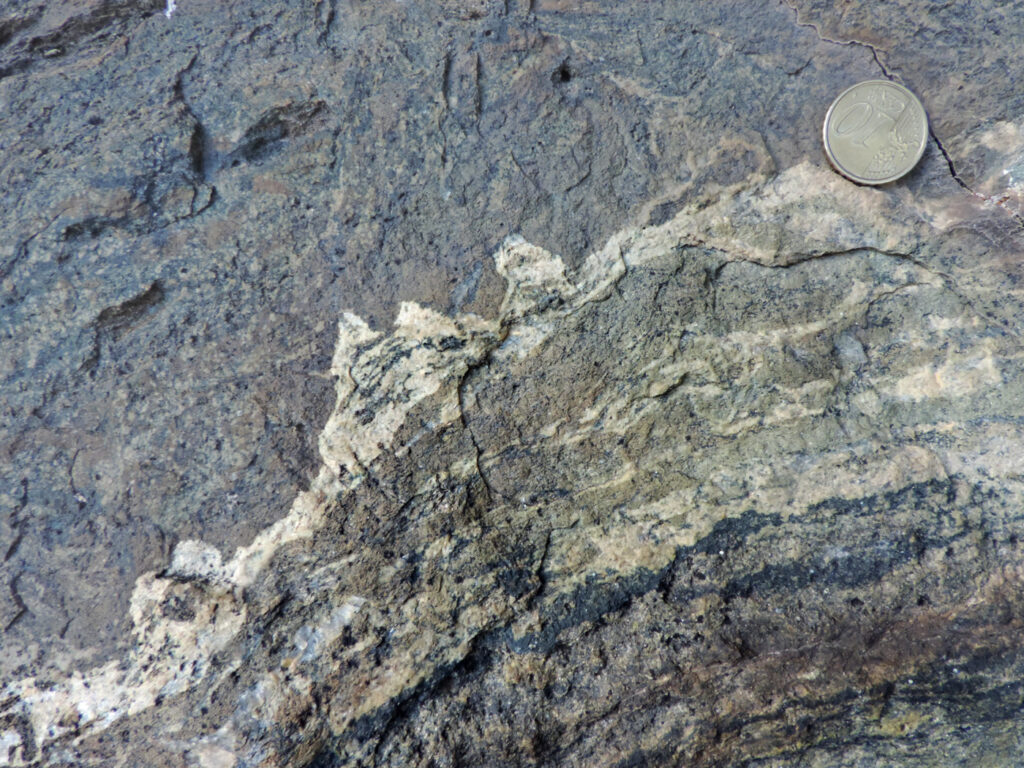 Livello mineralizzato nella glaucofanite della gran barra rocciosa. A vista sono più o meno riconoscibili titanite, granato, glaucofane ed epidoto.
