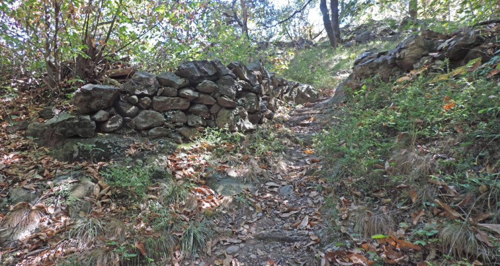 Alcuni muretti irradiantisi dalla zona della torre, che il sentiero attraversa per portarsi alle spalle del manufatto.