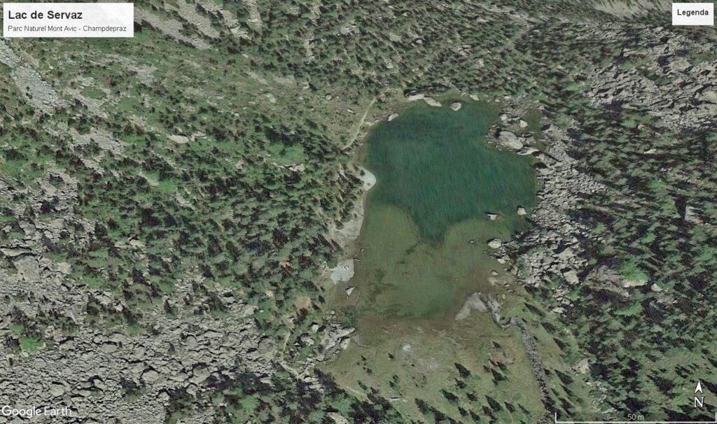 Il Lac de Servaz da satellite. In basso, verso sinistra, il vecchio innesto sulla Gran Goulaz. Quello nuovo a nord è rivelato solo dalla profondità dell'acqua.