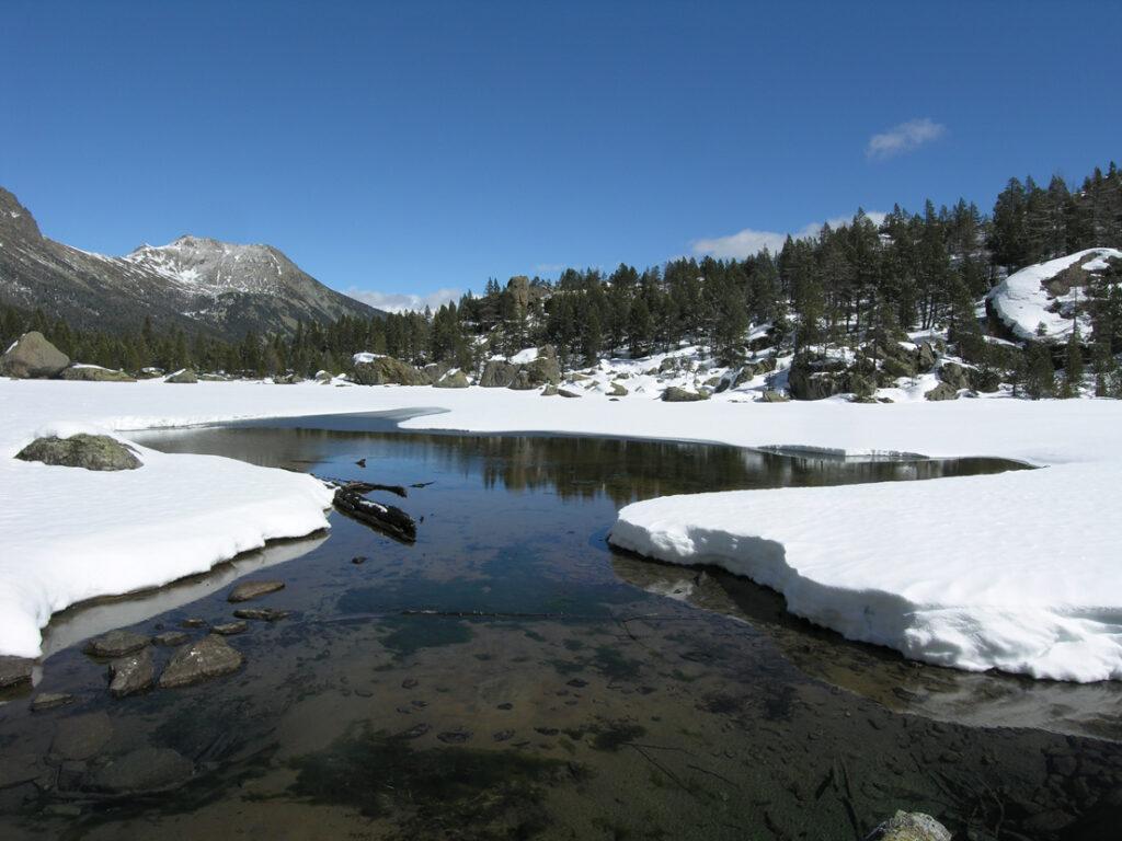 Disgelo selettivo alla superficie del Lac de Servaz. La sorgente sommersa d'inverno ha l'acqua più calda di quella presente nel lago.